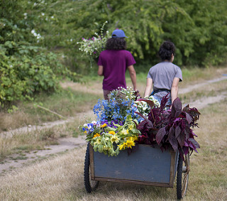 Two people pulling a cart with flowers and plants.