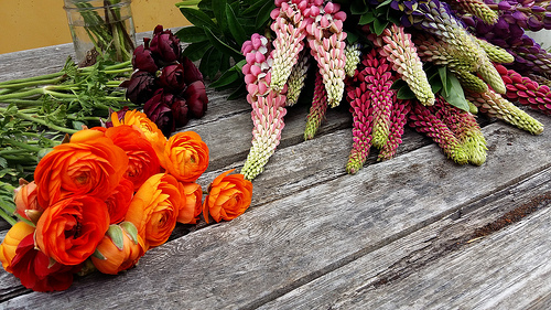 An assorted collection of orange and red flowers.