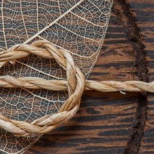 Making Rope from Foraged Fibre
