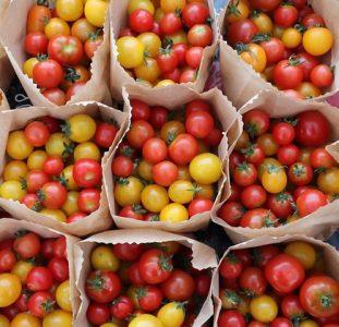 Saturday Farmers' Market Vendor Feature: Bakerbreeze Farm