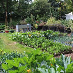 *Cancelled* Intro to Permaculture