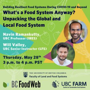 What's a food system anyway? Unpacking the global and local food system.
