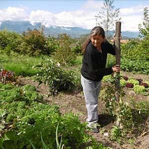 Cepagro: (Portuguese) International Cooperation Project – Projeto De Cooperação Internacional